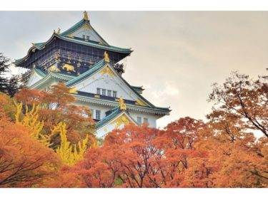 【Osaka Castle】An open-air cafe with a view of Osaka Castle Tower will open on Nov. 1st for a limited time!