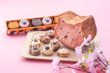 """How cute! The """"Spring Iroko Neko Set"""" with cat-shaped bread and paw-motif baked sweets will go on sale at Osaka Shin Hankyu Hotel for a limited time only!"""